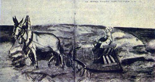 29.LabradoraMorisca