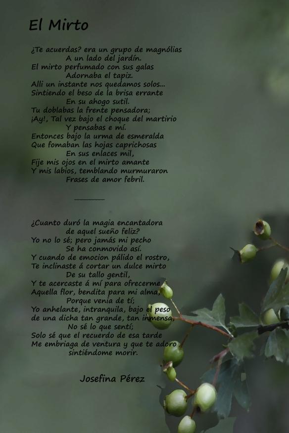 ElMirto